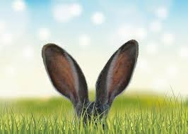The Easter Bunny Six: -10%