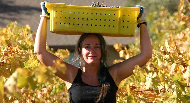 Spann Vineyards, Sonoma Valley, CA