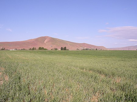 Red Mountain, WA,