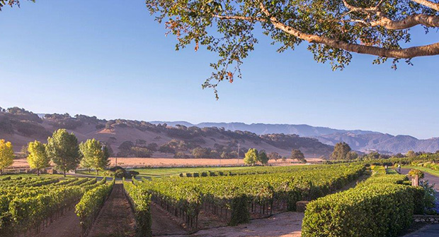 Santa Ynez Valley, CA,